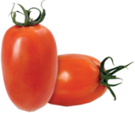 Tomate Saladete Italiano Kg